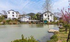 从经济的角度来看如何建设宜居宜业的美丽乡村